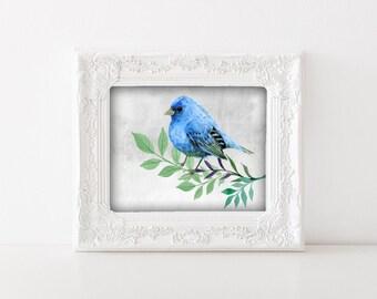 Blue Bird Art - Blue Bird Poster, Bird Artwork, Bird Watercolor Art, Vintage Bird Art, Digital Download, Instant File, Bird Wall Art