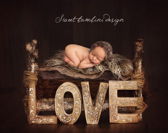 Newborn Photography Digital Backdrop Valentines Rustic Love Bed Instant Download