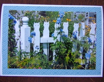 Kitty Fence with Flowers Card
