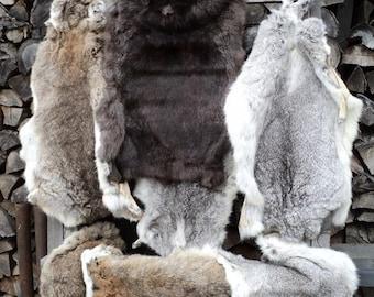 Beautiful rabbit skins
