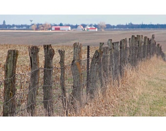 Pole and Branch fence, Print