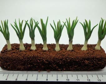 1:12th Scale Growing Onions Dolls House Miniature Garden, Accessory