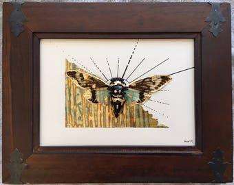 """Cicada Art - Framed - """"Rising Sun"""""""