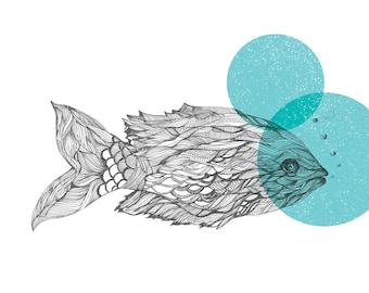 FIsh, Fish Drawing, Fish Illustration