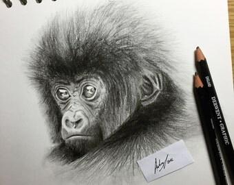 Endangered 3 'Baby Gorilla', A4 Original Illustration