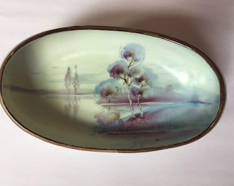 Handpainted Nippon celery relish oblong dish