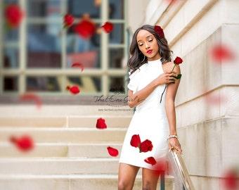 Bright Red Rose PNGs / Rose Overlay / Digital Roses