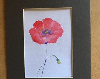 original watercolour painting, poppy