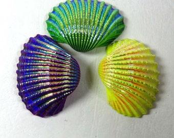 Titanium Shell. Sea Shell. Natural Titanium shell gemstone. 39x30-40x30mm. Titanium coated shell loose. 3Pcs. Titanium shell cabochon SEP-35