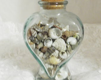 Jar of Small Shells for Crafting and Jewelry Making
