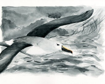Atlantic Yellow Nosed Albatross Endangered Animal Print