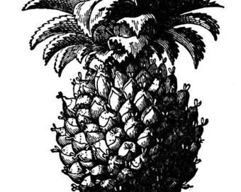 Traditional Pineapple Razmatats, Set of 1