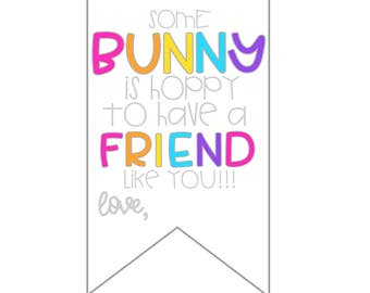 Easter Tags - Easter Gifts - Easter Printable Tags – Easter for Friends - Instant Download – Some Bunny is Hoppy to Have a Friend Like You