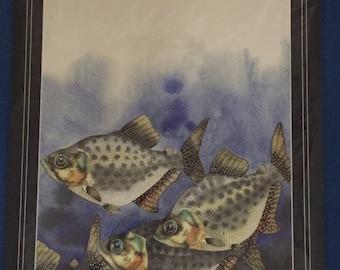 Print from an original watercolour painting - Pirana - fine art