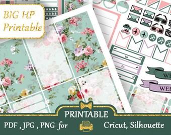 BIG HP stickers 2018 Emerald Blue pink Big Happy Planner Stickers Happy Planner Kit Printable Floral Planner Stickers Silhouette Cricut