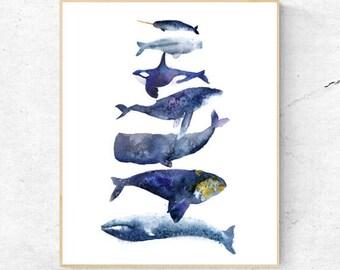 Original Group of Different Whales Watercolour Fine Art Print, Coastal Decor, Beach House Printable Digital Download