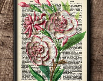 Gardenias · Instant Download · Flower · Vintage · Wall · Printable · Digital File #48