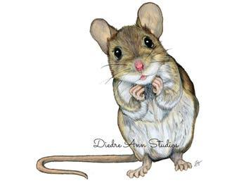 Mouse Nursery Fine Art Print - SKUWC106