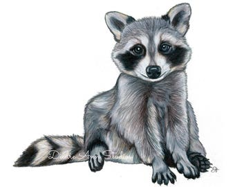 Baby Raccoon Nursery Fine Art Print -  SKUWC107