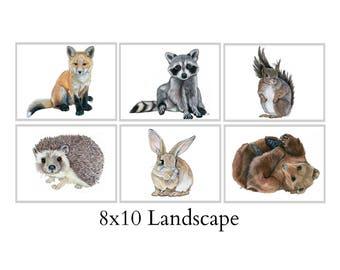 Set Of Six 8X10 Forest Animal Nursery Fine Art Prints - Automatic FREE Shipping - SKU105