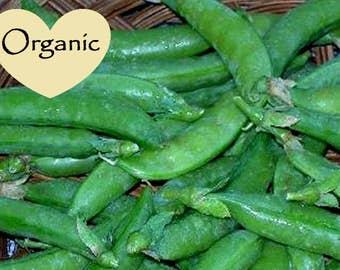 Pea Snap Sugar Daddy Organic Non-GMO, 25+ Organic seeds, Sugar Peas Snap, Organic garden Seeds, Vegetable Seeds, Organic gardening seeds