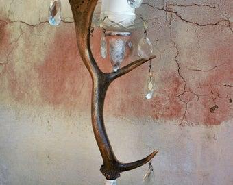 Fallow deer antler candle holder