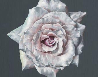 Rose in Bloom - Art Print