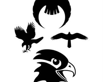 hawks svg, hawk, bird