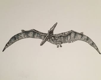 Hand Drawn Pterodactyl Illustration