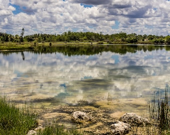 Reflections in a Florida Lake