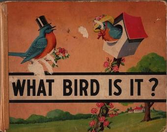 What Bird Is It? - Anna Pistorius - 1945 - Vintage Kids Book