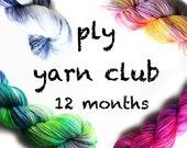 PLY yarn club / hand dyed yarn / 12 month membership / customizable / gift yourself / yarn membership /pancake & lulu yarn of the month club