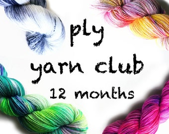PLY yarn club / hand dyed yarn / 12 month membership / customizable / gift yourself / yarn membership /pancake & lulu yarn of the month club