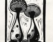 King Oyster mushroom dwel...