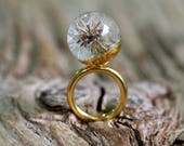 Dandelion Resin Ring, Gold-plated Sterling Silver Ring, Resin Jewellery, Dandelion Jewelry, Botanical Jewelry