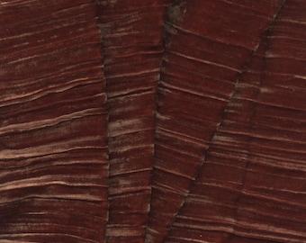 Beautiful Silk Velvet Fabric Apricot Crinkle