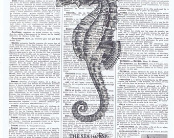 Sea horse.Antique.Book page Print.Art,Vintage.Home decor.buy 3 get 1 FREE.mom.dad.child.nursery.ocean.water.paris.eco art.pretty picture.kid
