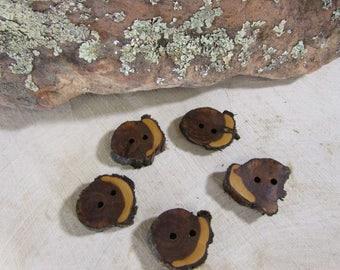 5 beautiful Juniper Wooden buttons- handmade buttons 1 inch (2036)