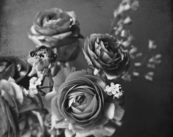 Black and White Art, Still Life Photography Print, Gray Flowers, Ranunculus, Monochrome Wall Art, 8x8 'Silvery Flowers'