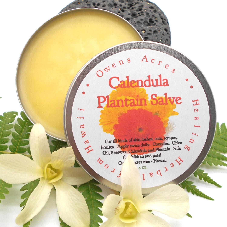 Skin salve calendula plantain for dry skin itchy skin