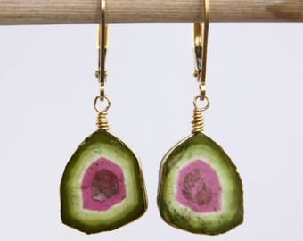 Watermelon Tourmaline Earrings, Tourmaline Slice Earrings - Gold Filled