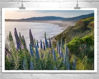 Stinson Beach Photo, Marin County Art, Seascape Print, Ocean Art, California Beach, Pacific Coast Highway, California Coast, Bay Area Art