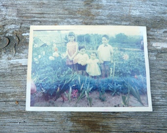Vintage aprox 1960s old French colored photography  children in a garden