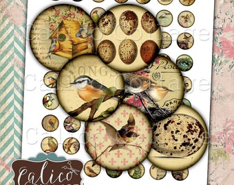 Vintage Birds, Digital Collage, 20mm Collage Sheet, Printable Circles, Instant Download, 20mm Circles, Printable Ephemera, Rustic Birds