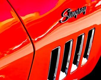1969 Chevrolet Corvette Stingray Lettering Car Photography, Automotive, Muscle, Sports Car, Mechanic, Boys Room, Garage, Dealership Art