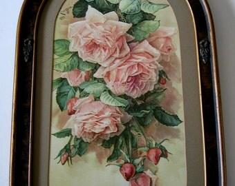 Paul de Longpre, Pink Roses, Art Print, Half Yard Long, Antique Barbola Frame