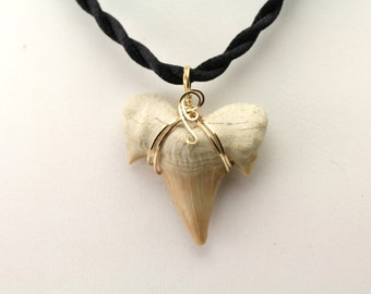 Shark Tooth Pendant. Listing 499806136