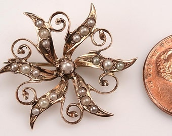 Victorian 12kt Yellow Gold and Seed Pearl Star Brooch