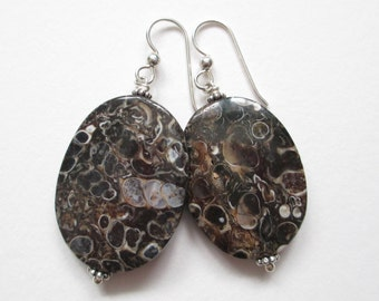 Turritella Agate earrings, fossil earrings, snail fossils, sterling and stone earrings