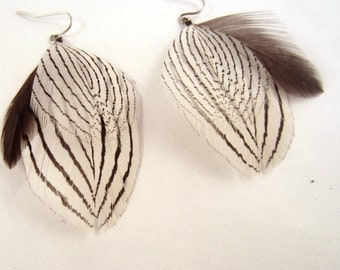Feather earrings Long Tail  tropic bird